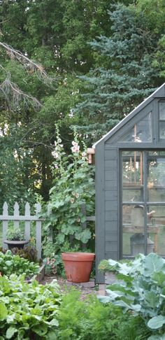 Classic cottage garden with perennials, herbs and edibles, with of course, digitalis as a focal point...lovely potting shed