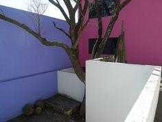 Luis Barragan's Casa Gilardi - on the roof