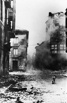 """Guernica: Only a dog dares to wander the streets with smoldering ruins. Guernica was bombed by the German """"Condor Legion"""" for a whole day using firebombs."""