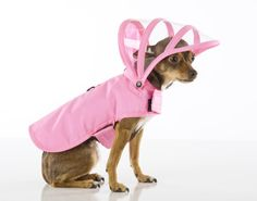 People may scoff at clothing for pets, but some pooches honestly prefer to stay dry: they should be allowed to wear a rain coat without shame. | 41 Insanely Clever Products Your Dog Deserves To Own