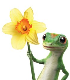 Spring comming around the corner . Gecko Tattoo, Lizard Tattoo, Geico Lizard, All Cartoon Characters, Animals Beautiful, Cute Animals, Have A Happy Day, My Flower, Frases