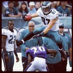 26 Best Eagles images   Fly eagles fly, American Football, Football  supplier