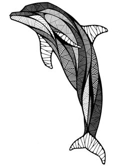 Grow on Behance Animal drawings by Andreas Preis Dolphin Drawing, Dolphin Art, Zentangle Drawings, Zentangle Patterns, Fish Zentangle, Zentangles, Zen Doodle, Doodle Art, Colouring Pages