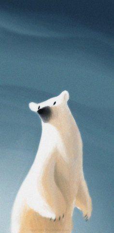 Polar bear, unknown author