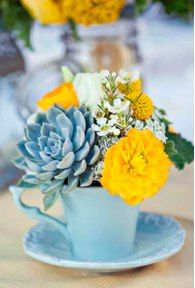 Awesome blue succulent in a blue teacup with yellow and white flowers.