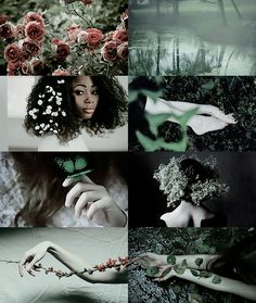 House aesthetics - Slytherin/Spring