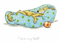 Bildergebnis für anita jeram dogs - Must love dogs - Hunde Cute Drawings Tumblr, Easy Cartoon Drawings, Animal Drawings, Cute Bunny Cartoon, Cartoon Dog, Anita Jeram, Photo Images, Dog Quotes, Happy Dogs