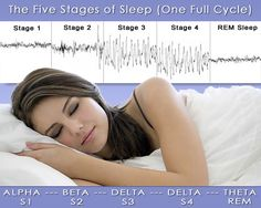 Sleep Stages - Stage 1 is a light sleep and you are easily woken. Stage 2 is marked by a loss of nearly all muscle tone (sleep paralysis or REM atonia) so your physical body can't act out your forthcoming dreams. Stage 3 is the beginning of a deep sleep, also known as Slow Wave Sleep. Stage 4 is the deepest kind of Slow Wave Sleep. REM Sleep marks the onset of dreaming.