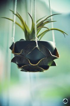 ::: OutsaPop Trashion ::: DIY fashion by Outi Pyy :::: DIY leather plant hanger