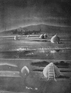 Paysage  champs montagne botte de foin