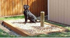 Start a fireDIY Porch Potty for dogs and puppies, makes cleaning up easier and allows you to have a dog in town.Potty Training Tip NUMBER 2 - Find a place in the bathroom and always Outdoor Dog Area, Dog Bathroom, Bathroom Ideas, Pet Dogs, Dogs And Puppies, Dog Toilet, Dog Spaces, Dog Yard, Dog Potty