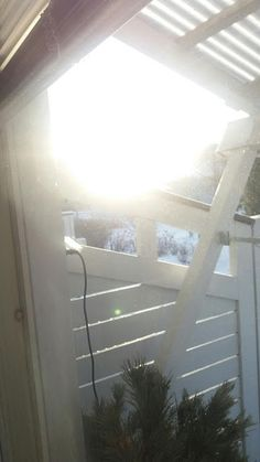 RunoMaalari: Luonto........ Ajatus auringossa