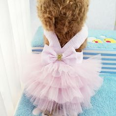 Take a look at the amazing Spring Pet Summer Bowknot Pet Costume Dress Pet Dog Striped Cat Dog Puppy Wedding Princess Tutu Skirt Floral Dog Clothes D9440. Hot or not? Tag a friend who would love this! Need To Buy - Smarter Shopping, Better Living! Price: 9.99 & FREE Shipping Buy one here---> https://needtobuy.co/product/spring-pet-summer-bowknot-pet-costume-dress-pet-dog-striped-cat-dog-puppy-wedding-princess-tutu-skirt-floral-dog-clothes-d9440/