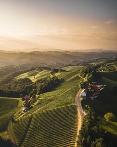 Beautiful Places In The World, What A Wonderful World, Steampunk Heart, Wonders Of The World, Austria, Amazing Photography, Vineyard, Journey, Nature