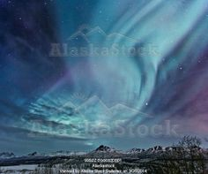 Photo of Composite Northern Lights (aurora borealis) over the Talkeetna Mountains on a sub-zero clear evening, Southcentral Alaska, Winter
