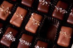 Fran's Chocolates - Salted Caramels (OMG, THESE ARE SO GOOD!).