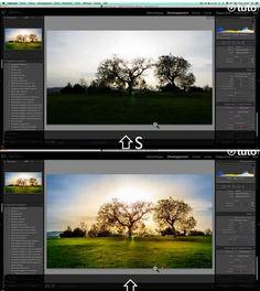 Vous aimeriez traiter vos photos avec Lightroom pour en optimiser le rendu mais vous ne savez pas utiliser le logiciel....