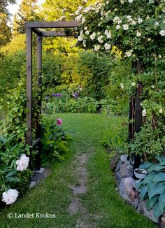 Landet Krokus: En helt ny trädgård - All About Garden Arbor, Backyard Garden Design, Garden Trellis, Garden Paths, Backyard Landscaping, Back Gardens, Outdoor Gardens, Amazing Gardens, Beautiful Gardens