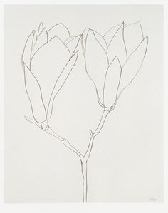 #sketchbooktips: simple line drawings can be just as beautiful as complex drawings, so remember to keep it simple! :: Ellsworth Kelly ::