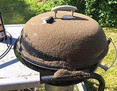 Annas trick til at dræbe insekter med en grill spredes som en steppebrand Bra Hacks, Anna, Diy Projects To Try, Bra Tips, Bread, Cleaning, Facebook, Inspiration, Crickets