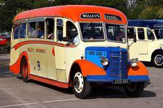 Volkswagen Bus, Vw Camper, Volkswagen Beetles, Campers, Bedford Buses, Routemaster, Bus Coach, Classic Trucks, Coaches