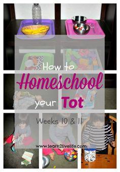 how-to-homeschool-your-tot-wks-10-11