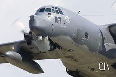 C-130 Hercules 'USAF'