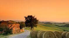 ... Paisaje de la Toscana ...