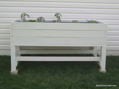 Great planter box