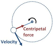 Spin a bucket of water around yourself; stay dry; and learn about centripetal force
