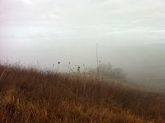 Lungo la Via Francigena senza vedere niente: nebbia in #terredisiena