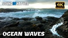 Calm down with the relaxing nature sound of ocean waves crashing Ocean Sounds, Nature Sounds, Cloudy Day, Calm Down, Ocean Waves, Calming, Relax, Water, Outdoor