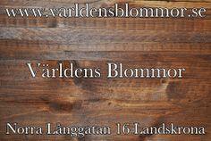 Annorlunda blomsteraffär Världens Blommor i Landskrona hittar ni på Norra Långgatan 16 och på Google plus Google Maps Pinterest Instagram Facebook Twitter YouTube och www.varldensblommor.se Telefon: 0418651159