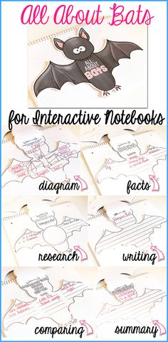 Do you complete a unit on BATS in your classroom?  If so...check this out!  This Bat-Shaped Writing Booklet for your Interactive Notebooks has everything in it for your students to write about BATS!$