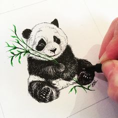 "81 Likes, 4 Comments - Kristie Mudares (@kristiemudares_ldn) on Instagram: ""Just drew up this little #panda #drawing #sketch"""