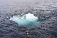 Ice Watch – Olafur Eliasson