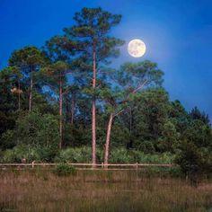 Good Night-İyi Geceler-Au revoir- Gute Nacht-Boa Noite-Buenas Noches-Good Bye-Hoşca kalın..!!🌙⭐⭐⭐