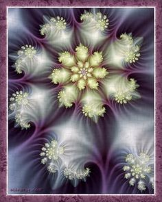 """Queen Anne's Lace"" - art by fractal, via  deviantArt"