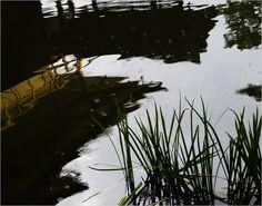 Gail Rieke | Kinkakuji Reflection