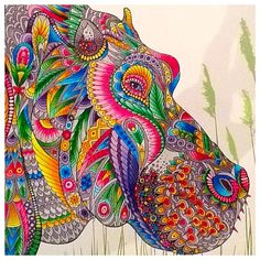 the menagerie colouring book is filled with beautiful animal heads to