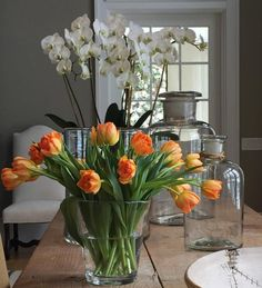 Ina Garten's tulips - no need for trimming!