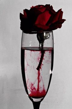 Ꮚelcome to ᙢy dark, elegant Ꮚorld of blood red and golden edits, roses, romance and the dark world of curiosities and Vampires. ~No Porn or gore~ Goth Dolly© Red Aesthetic, Aesthetic Pictures, Aesthetic Roses, Makeup Aesthetic, Aesthetic Drawing, Travel Aesthetic, Foto Art, Gothic Art, Dark Fantasy