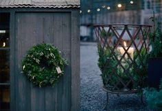 Så pyntar Zetas trädgård för jul