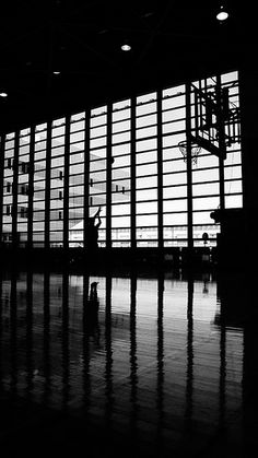 """""""Shoot"""" Photograph by Sakak"""