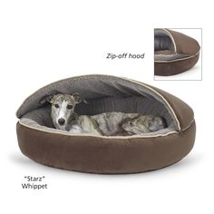At In The Company Of Dogs you'll find a great selection of Beds for dogs and dog lovers. Shop for Beds today! Cute Dog Beds, Cute Dogs, Dog House Bed, Dog Houses, Mans Best Friend, Dog Gifts, Dog Friends, Funny Dogs, Dog Bowls