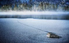 Like a louse I must grouse there's a mouse in the house. Please douse that thing right now! #truckee #donnerlake #california #artofvisuals #fineartphotography #fineart #winter#landscape_captures #landscapephotography