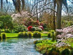 Christchurch, New Zealand: Hagley Park
