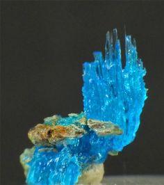 Chalcanthite - Burra Burra, South Australia