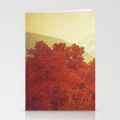 """Where They Made Love Stationery Cards / SET OF 3 FOLDED CARDS (5"""" X 7"""") by Katayoon Photography - $12.00"""