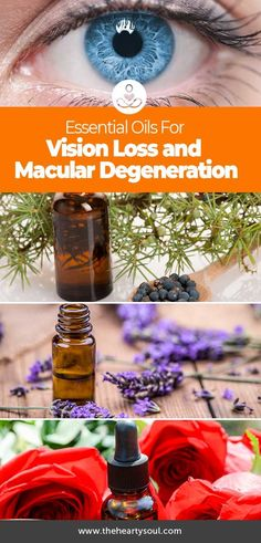 While their is currently no proven cure for vision loss from macular degeneration, anecdotal reports have seen certain essential oils used to some success. This is certainly a promising start, and another amazing use for essential oils.